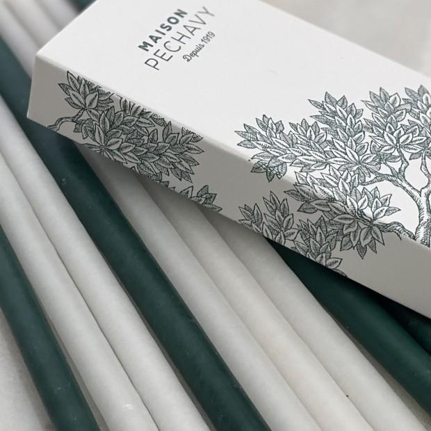 Cierges et longues allumettes Lichen